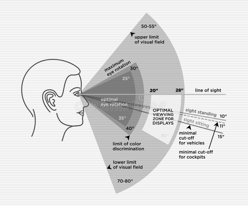 Ergonomics optimal angle view. Human sight range. Ergonomics of optimal angle view. Human sight range and distance.. Correct sitting and standing angle when vector illustration