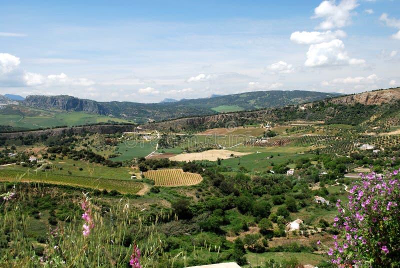 Erhöhte Ansicht über Ackerland und die Landschaft, Ronda, Spanien lizenzfreies stockbild