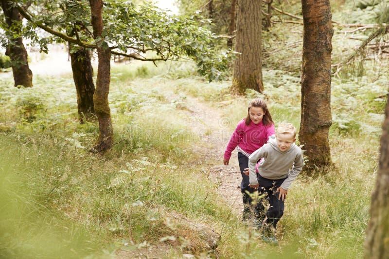 Erhöhte Ansicht von zwei Kindern, die oben eine Steigung in einem Wald, selektiver Fokus, in voller Länge wandern stockfotografie