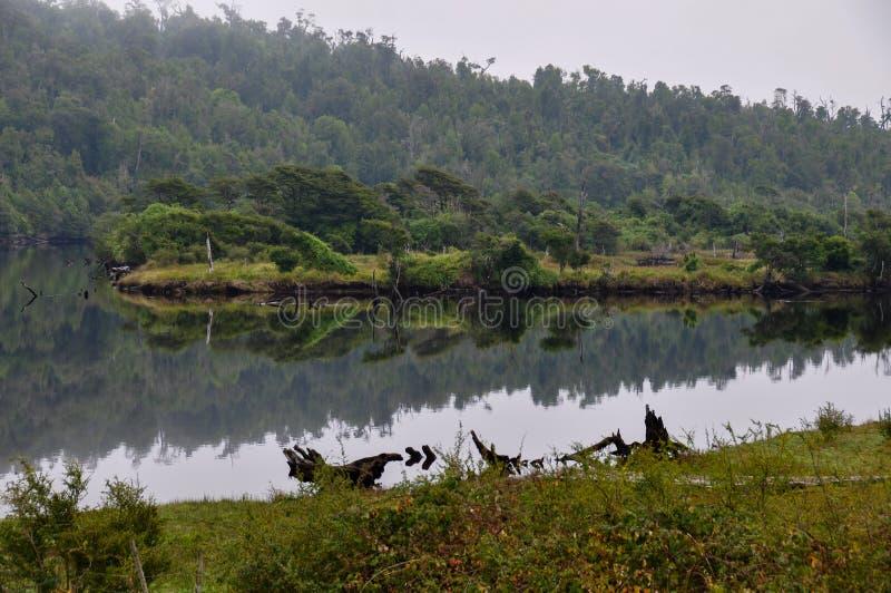 Erhabener Nebenfluss, Chiloé-Insel, Chile stockfoto