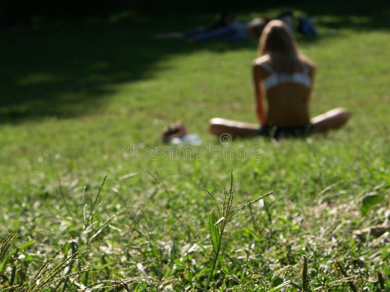 Erhalten eines Tan in Central Park lizenzfreie stockfotos