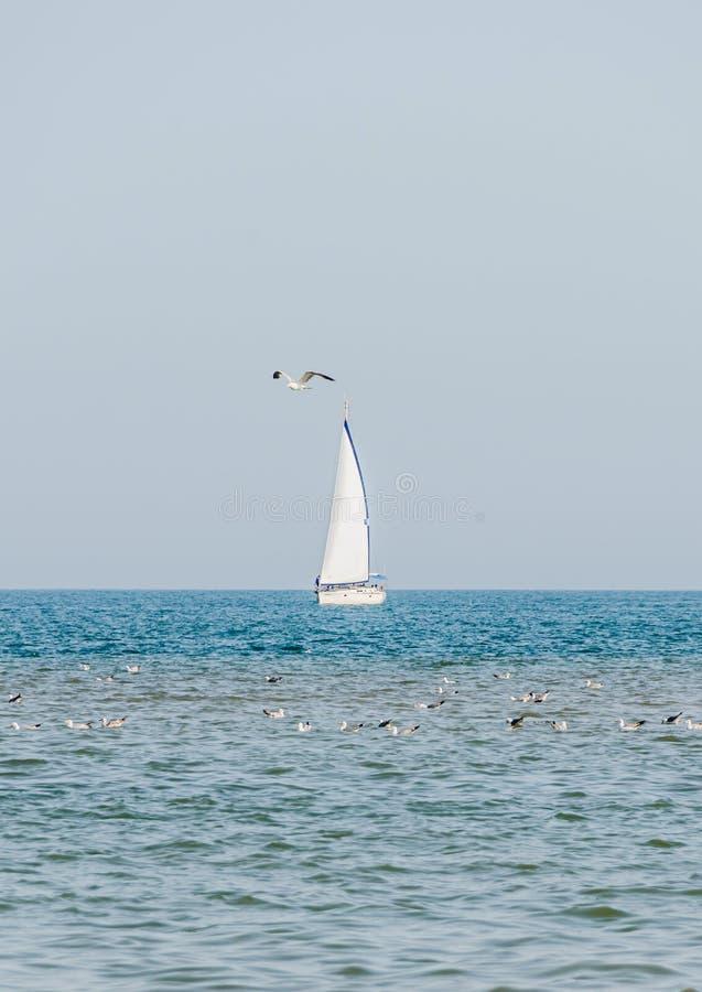 Erholungsyacht, Schiffssegeln auf Schwarzem Meer, blaues Wasser, sonniger Tag und klarer Himmel lizenzfreie stockbilder