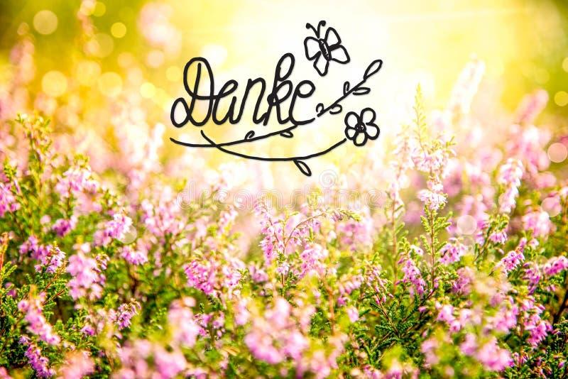 Erica Flower Field, caligraf?a Danke significa le agradece fotos de archivo