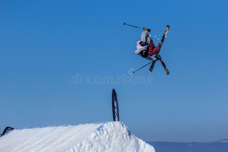 Erik Lundmark, Szwedzka narciarka fotografia stock