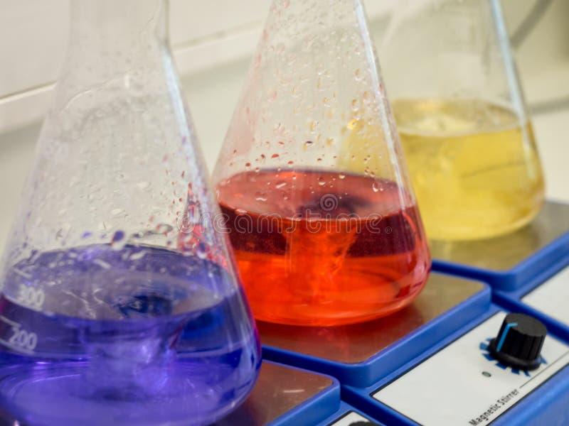 Erlenmeyer flaskor med färgrika lösningar royaltyfri foto