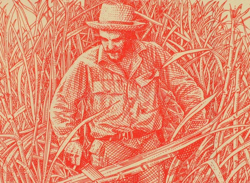 Ernesto Che Guevara lizenzfreies stockbild