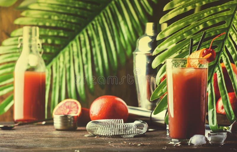 Erneuerndes schwach alkoholhaltiges Cocktail des Sommers mit Wodka, Orangensaft, blutiger Orange und Eis Heißer Tag an der Strand lizenzfreie stockbilder