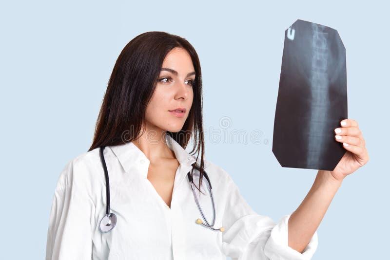 Ernste Ärztin betrachtet aufmerksam x-Strahl, überprüft Leute ` s Dorn, trägt weißes Laborkleid, hat phonendosope auf Hals, steht lizenzfreies stockfoto
