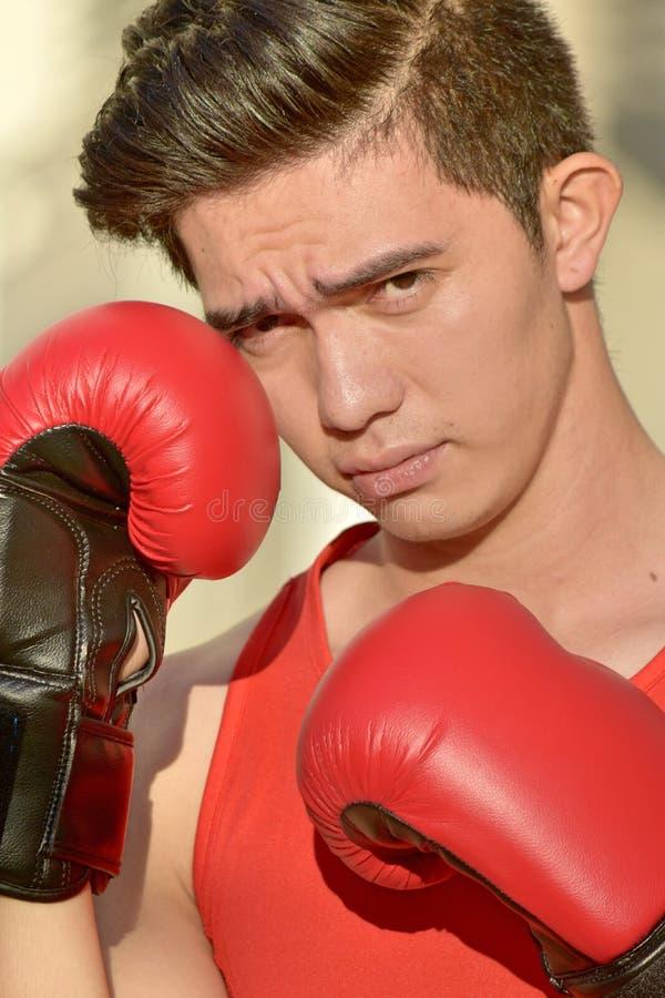 Ernster Sitz-verschiedener männlicher Boxer-athletischer Mann stockbilder