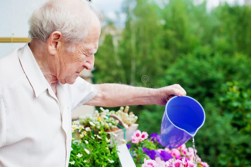 Geconcentreerde Hogere het Water geven Bloemen stock afbeelding