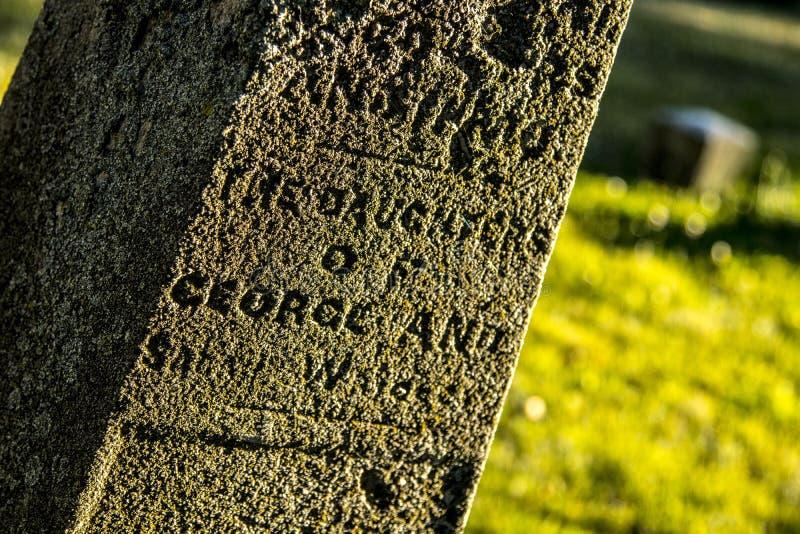 Ernstige Teller bij een Oude Begraafplaats royalty-vrije stock foto's