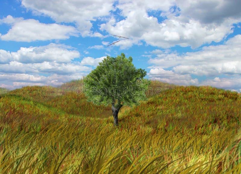 Ernte-Feld mit einsamem Baum stockfotografie