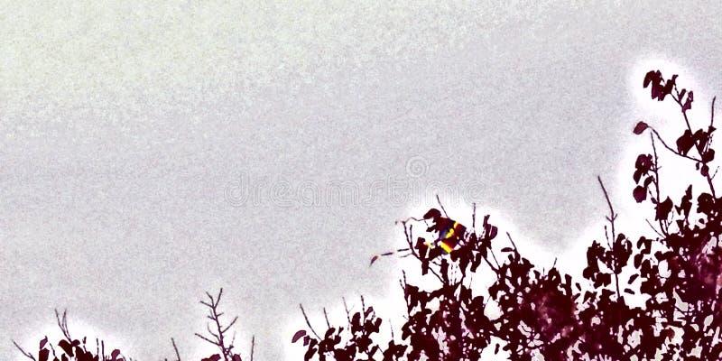 Ernte vom Drachen gehaftet auf Baum, mit unterschiedlicher Farbe lizenzfreie abbildung