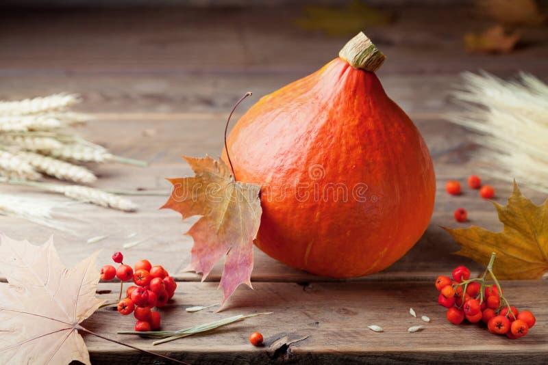 Ernte vom orange Kürbis auf rustikalem Holztisch Rot und Orange färbt Efeublattnahaufnahme stockbild