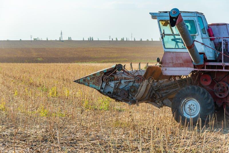 Erntemaschine auf dem mähenden Säen des Feldes, sammelt Herbsternte stockbild