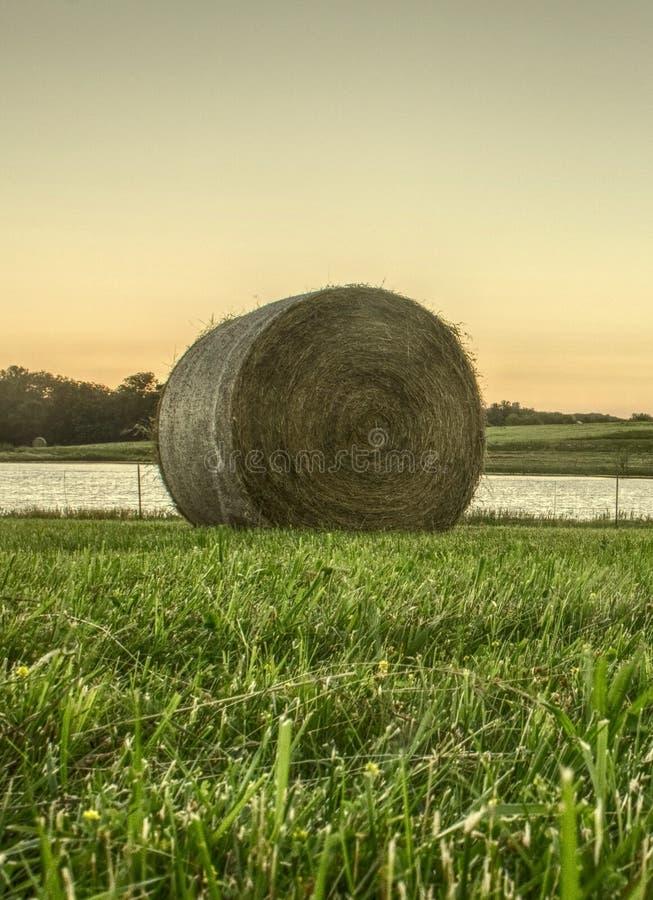 Ernten der Felder lizenzfreie stockfotos