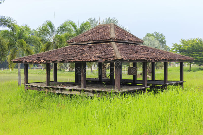 An erode house. Image show an erode house in a green rice field stock photo