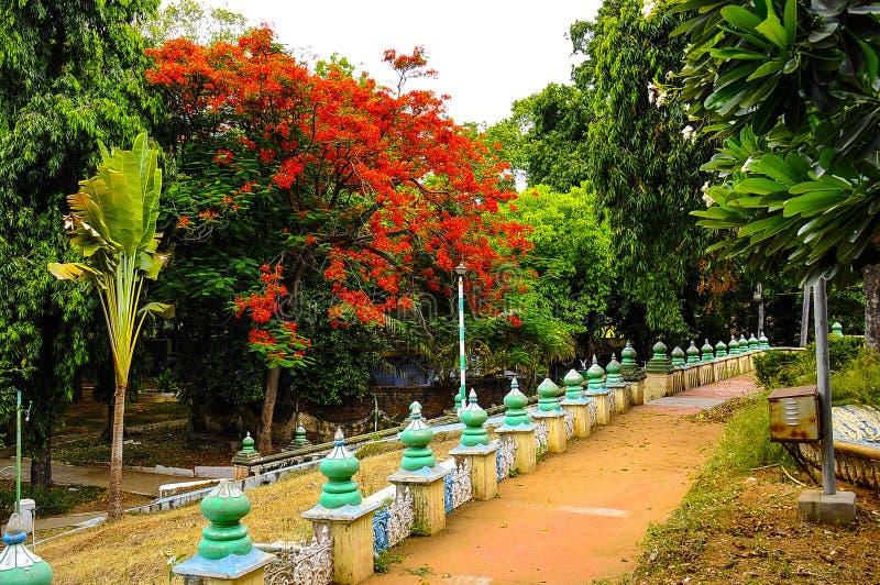 Erode park stock photo