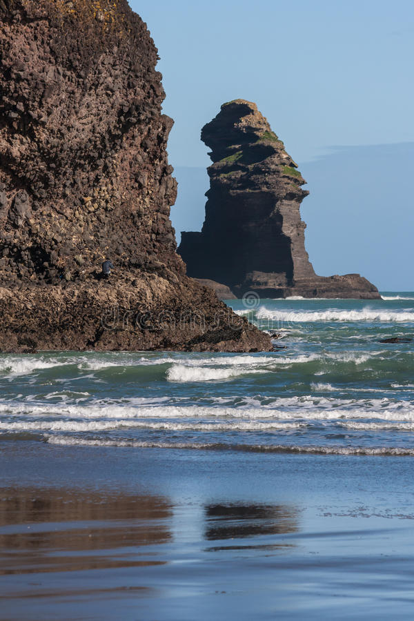 Eroded cliffs at Piha beach. In New Zealand stock photos