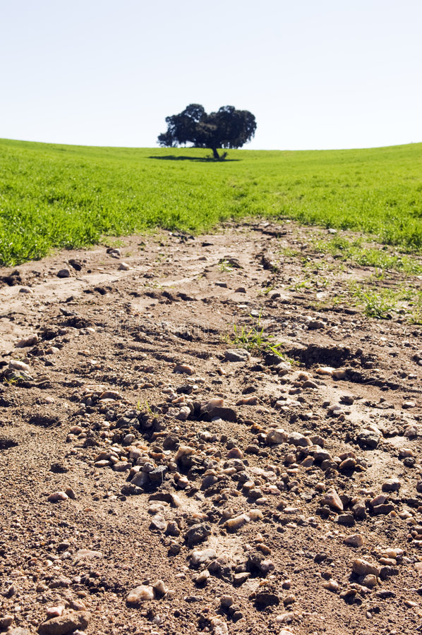 Free Eroded Field Stock Images - 4416074