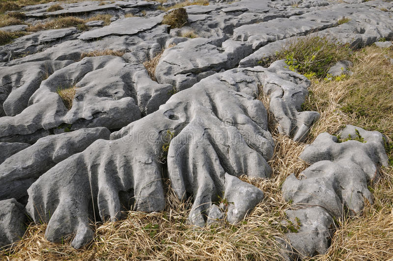 Download Eroded Water Washed Limestone Royalty Free Stock Image - Image: 20999216