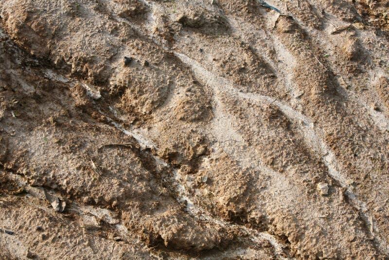 Erosión de suelo fotografía de archivo libre de regalías