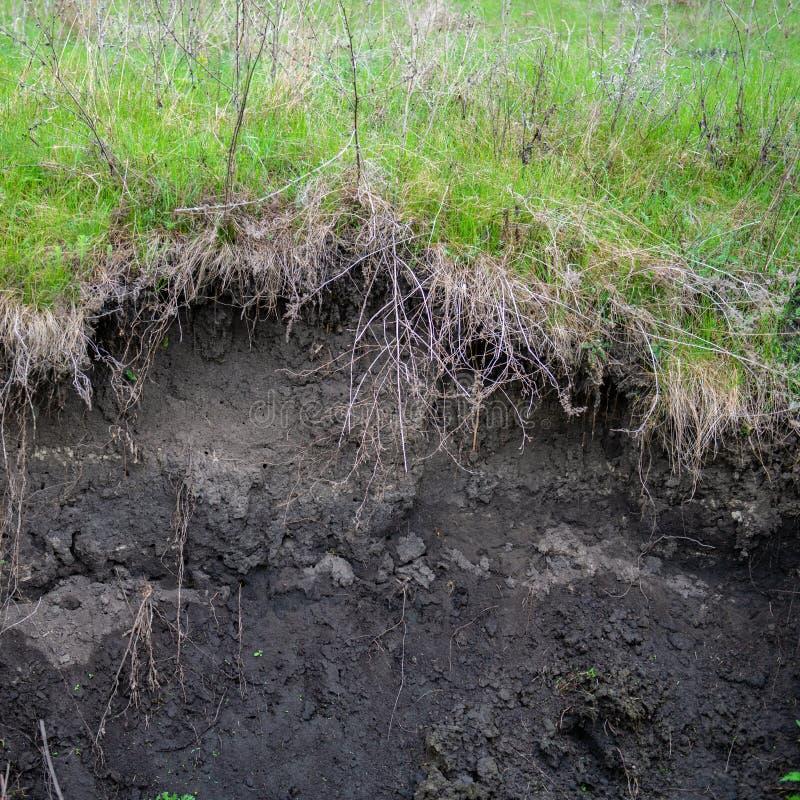Erosión de suelo en el campo agrícola fotos de archivo