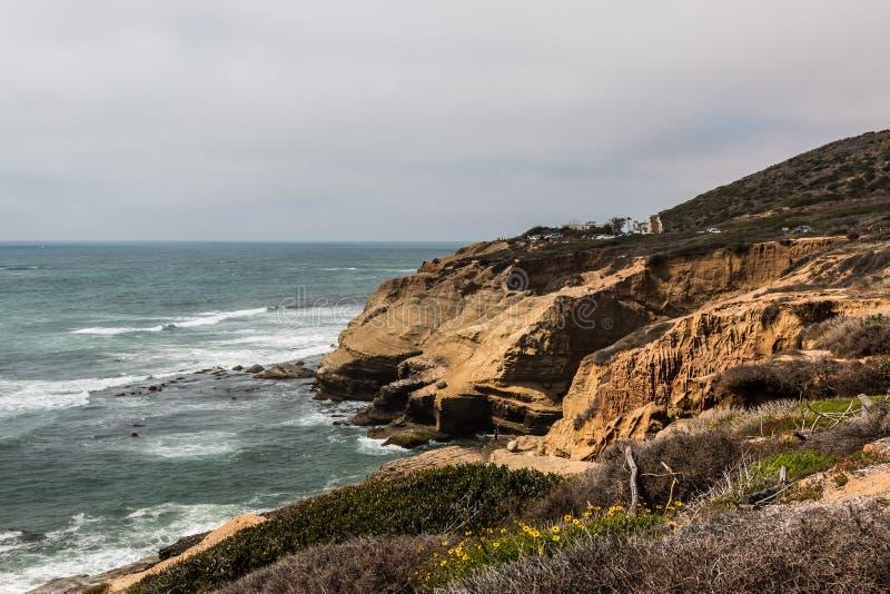 Erosión y follaje de Cliffside en el punto Loma Tide Pools foto de archivo libre de regalías