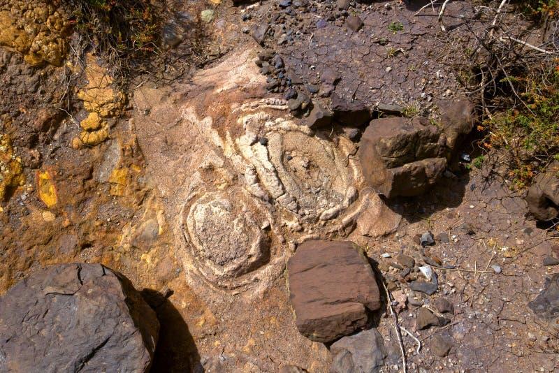 Erosie van de grond stock afbeelding
