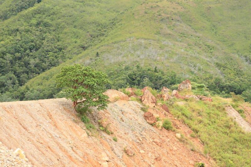Erosion royaltyfri fotografi