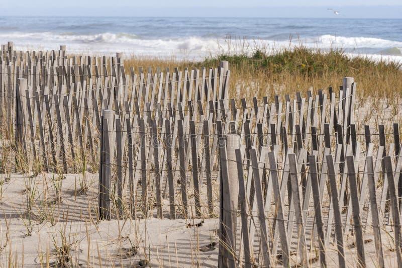 Erosion fence and American beachgrass protecting Nauset Beach sand dune. Nauset Beach surf breaking beyond zigzagging erosion fence on sand dune royalty free stock image