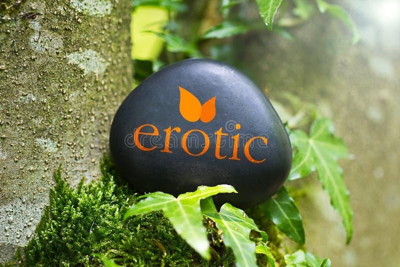 erotic fotografia de stock royalty free