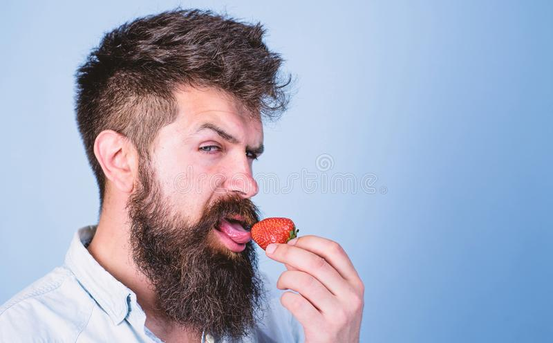Erotic concept. Oral pleasure. That is how tastes summer. Man handsome hipster with long beard licking strawberry. Tongue. Hipster enjoy juicy ripe red stock photography