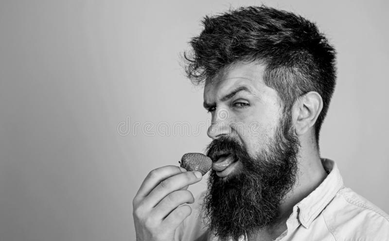 Erotic concept. Oral pleasure. That is how tastes summer. Man handsome sexy hipster with long beard licking strawberry. Tongue. Hipster enjoy juicy ripe red royalty free stock photos