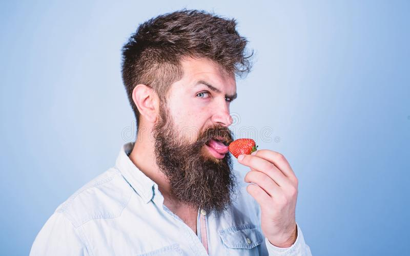 Erotic concept. Oral pleasure. That is how tastes summer. Man licking sweet berry. Man handsome sexy hipster with long. Beard licking strawberry tongue. Hipster stock photos