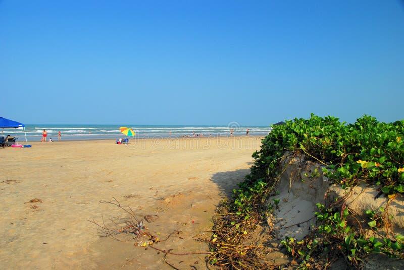 erozji plażowej huragan obraz royalty free