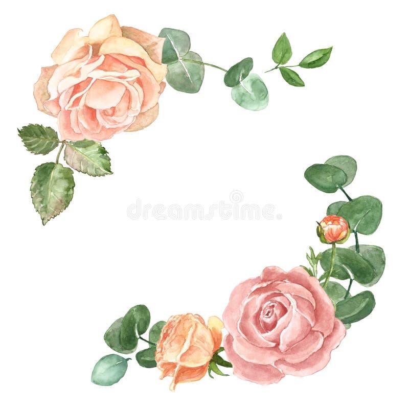 Erröten Blumenrahmenschablone des eleganten Aquarells für Heiratseinladungen und Karten mit rosa Rosen und Eukalyptusgrünblätter, lizenzfreie abbildung