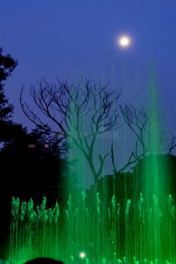 Erreichen Sie den Himmel - die Brunnen, die den Vollmond berühren Grün lizenzfreie stockfotografie