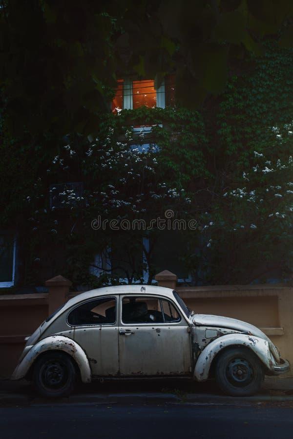 Erro bonito da senhora idosa que espera na paciência Branco do besouro da VW imagem de stock