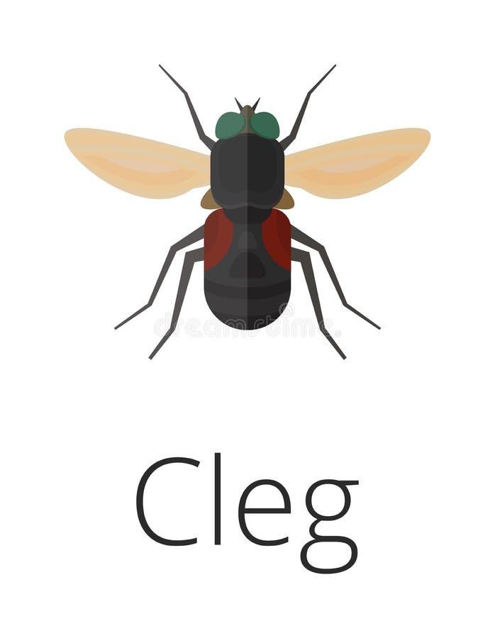 Erro do inseto do parasita da pele de Cleg ilustração royalty free