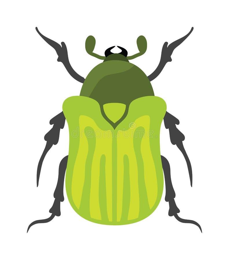 Erro liso do inseto do besouro no vetor do estilo dos desenhos animados ilustração stock