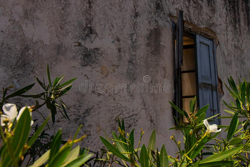 Erschöpftes Haus hinter Grünpflanzen stockfotografie