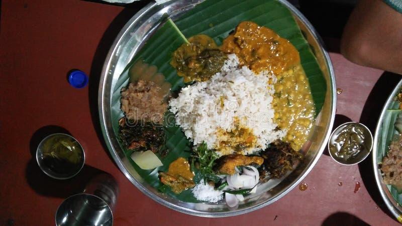 Erschütterung bedeutet Reis stockfoto