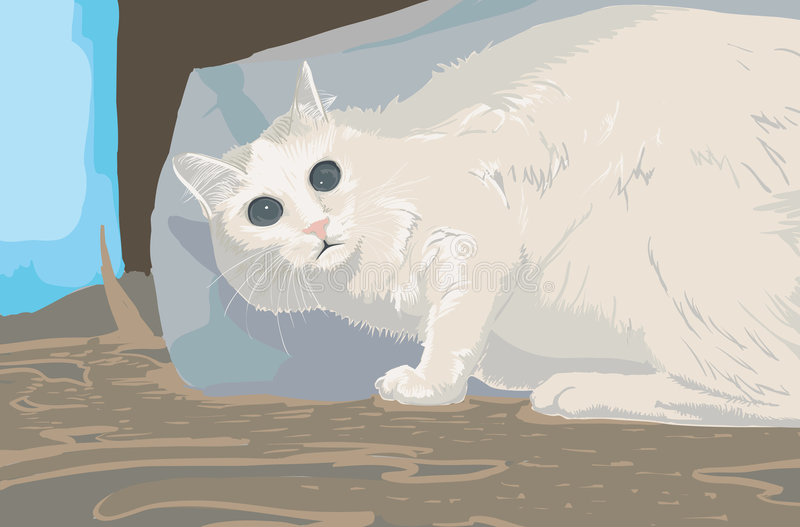 Erschrockene Katze stockfotos