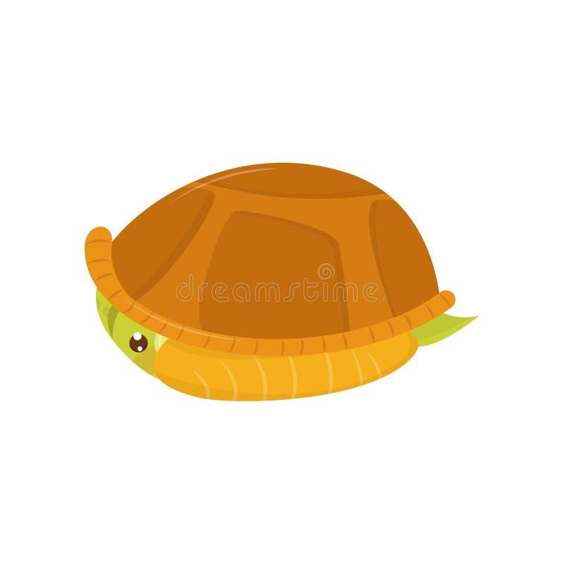 Erschrockene Suppenschildkröte, die in seinem Oberteil sich versteckt Zeichentrickfilm-Figur des Reptils Meerestier Flaches Vekto stock abbildung