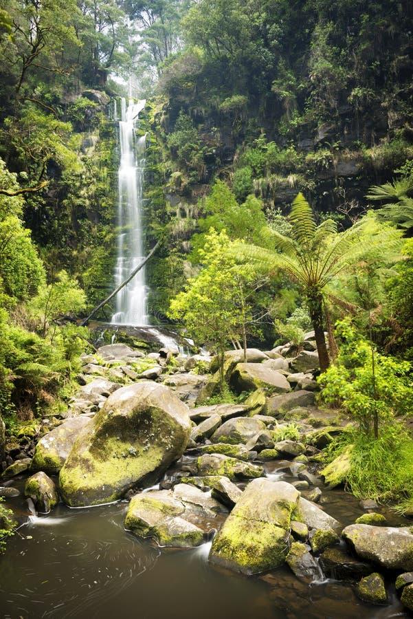 Erskine Falls Waterfall royalty-vrije stock foto's