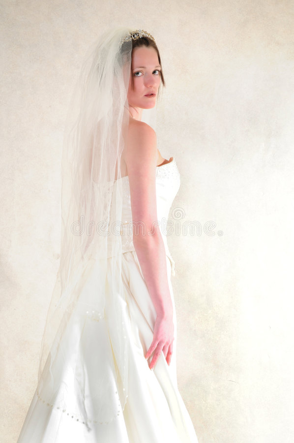 Erstaunliche Braut lizenzfreie stockfotos