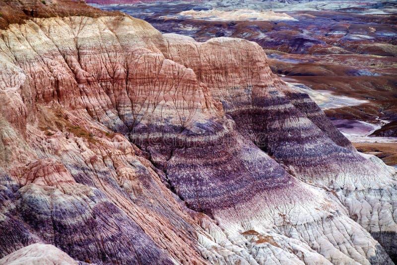Erstaunliche gestreifte purpurrote Sandsteinformationen von blauen MESA-Ödländern in versteinertem Forest National Park lizenzfreies stockbild