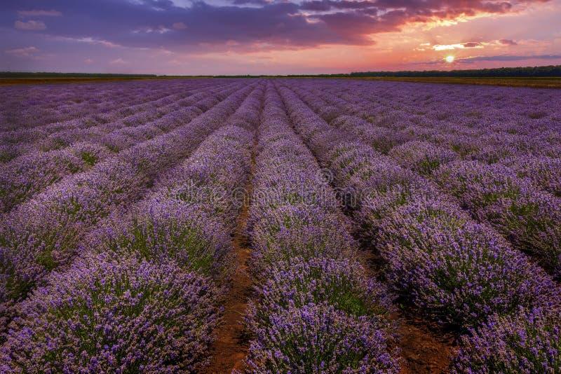 Erstaunliche Landschaft lizenzfreie stockfotos