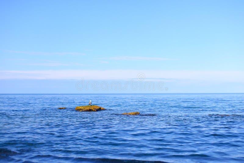 Erstaunliche Landschaft von endlosem Meer unter klarem Himmel auf warmem Sommer lizenzfreie stockfotos